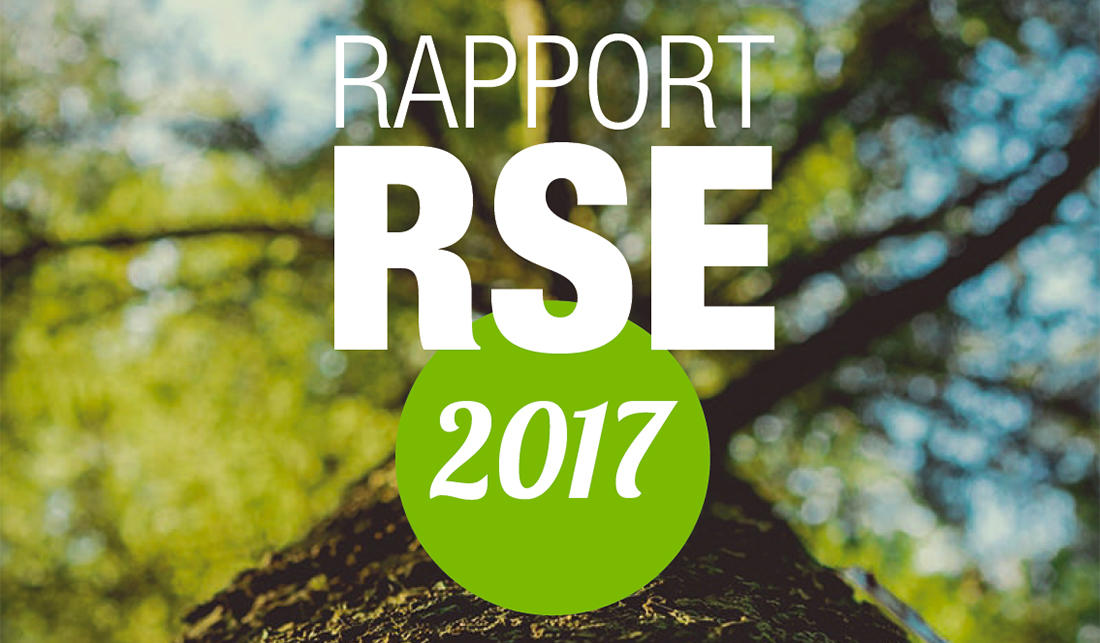 Rapport RSE 2017