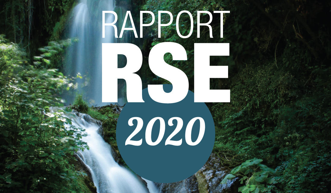Rapport RSE 2020